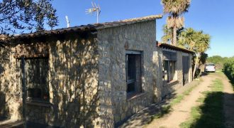 Charming Rustic House in Algaida