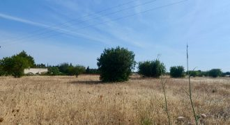Plot of 15,200m2 in Marratxi
