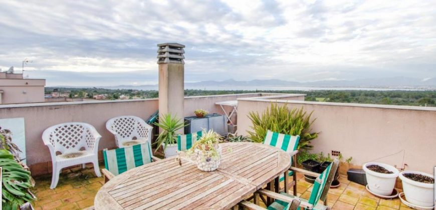 Penthouse with Sea Views in Ses Palmeres