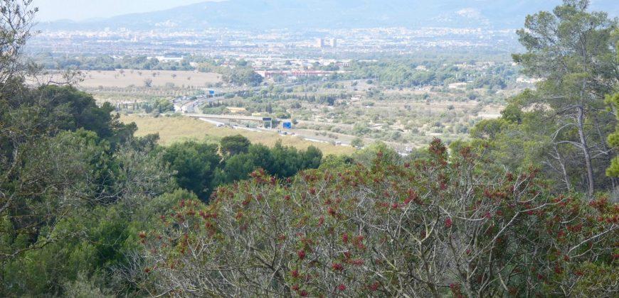 Espectacular Finca Rústica en Marratxi