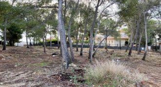 Urbanizable Land in Cala Vinyes