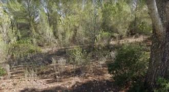 Plot in Sol de Mallorca