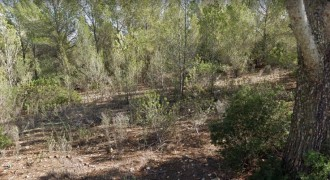 Terreno en Sol de Mallorca