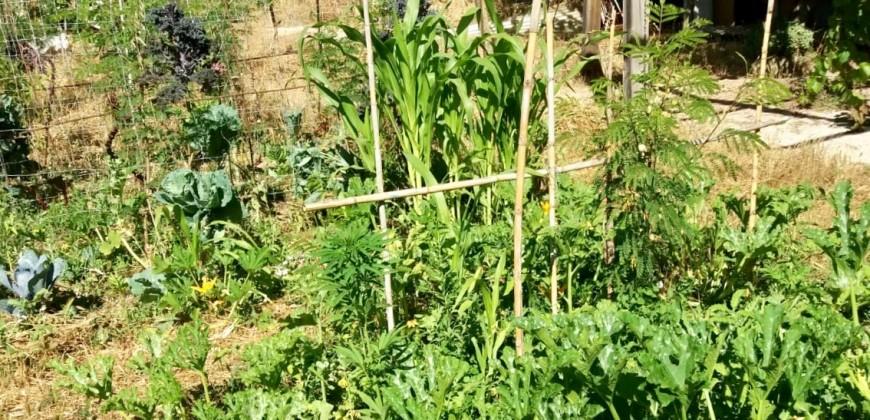 Casa Rural en Campos