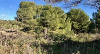 Terreno de 457m2 en Las Maravillas, Playa de Palma