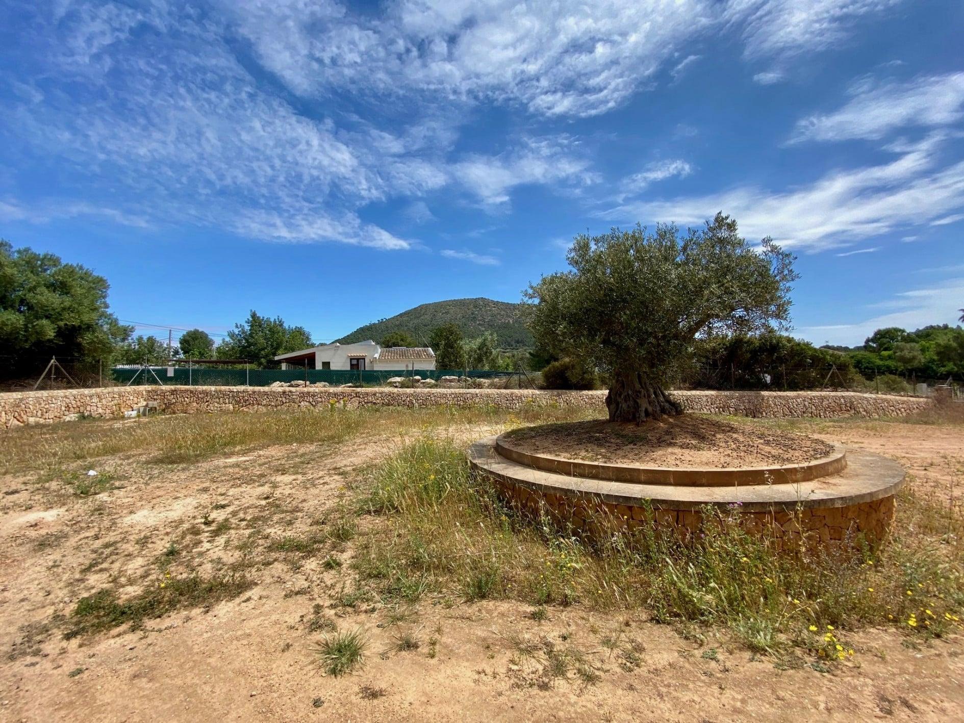 Finca Rústica de Piedra Mallorquina en Llucmajor